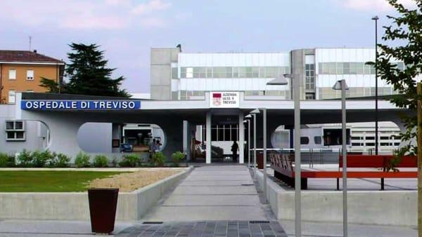 L'Università di Padova sbarca a Treviso: «Grande opportunità per gli studenti di tutta Italia»