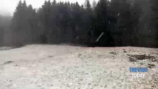 Nevicata sul Cansiglio, fiocchi oltre i 500 metri di quota