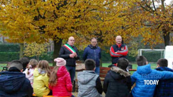 treviso: i bambini piantano una quercia per la giornata nazionale dell'albero-3